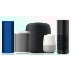 Speakers with voice assistants (0)