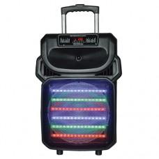 """IQ Sound 12"""" Tailgate Speaker"""